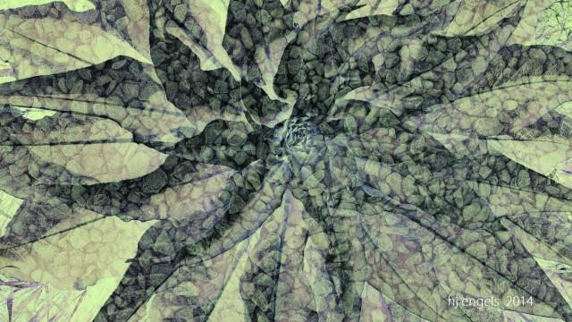 Blätter – Insel-Hombroich